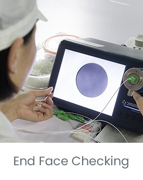 End Face Checking